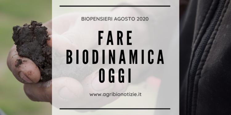 BIOPENSIERI AGOSTO 2020: FARE BIODINAMICA OGGI