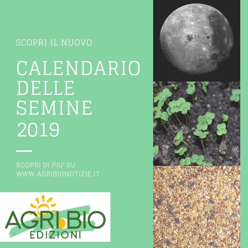 Calendario Lunare Maggio.Il Calendario Delle Semine Cos E E Come Usarlo Scarica