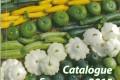 Catalogo Sativa