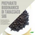 PREPARATO BIODINAMICO DI TARASSACO 506
