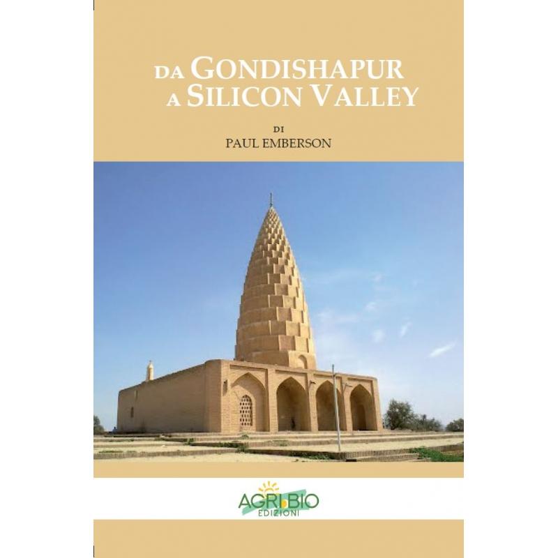 da-gondishapur-a-dilicon-valley-paul-emberson-