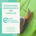 dissuasore biodinamico per lumaca
