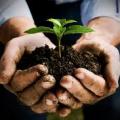 suggerimenti ed idee trattamenti biodinamici